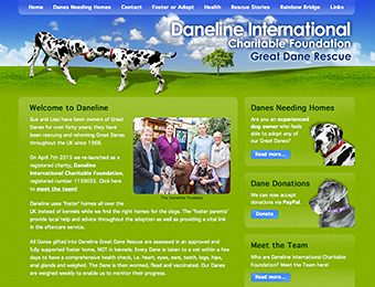 Web design - Daneline International Charitable Foundation website